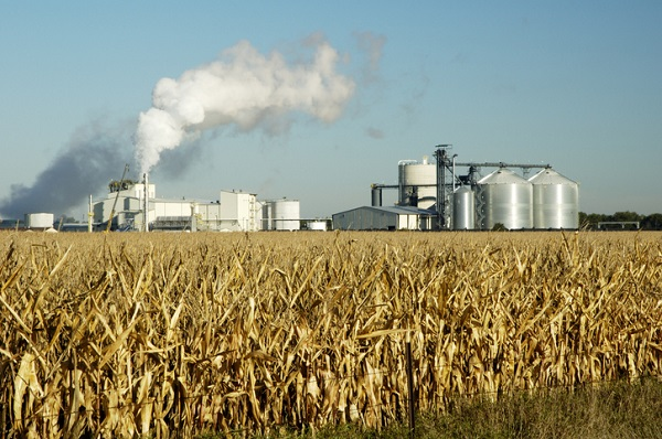 Ethanol comes from processed corn grown from crops, starch, and agricultural feedstocks