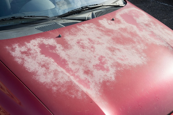 Pay attention to what lands on a car to avoid extreme paint damage
